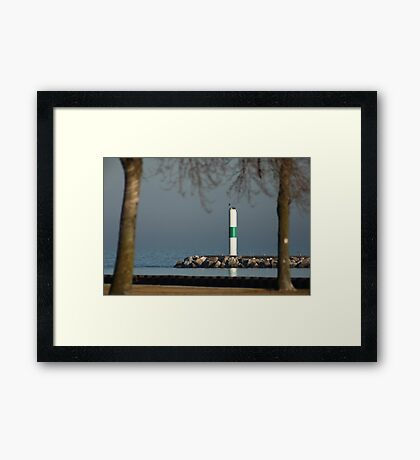 One isn't a tree! Framed Print