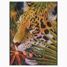 Jaguar Jungle by Graeme  Stevenson
