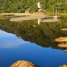 Tidal river reflections, Wilson's Promontory, Victoria. by johnrf