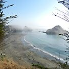 Elk Beach South, California by Joni  Rae