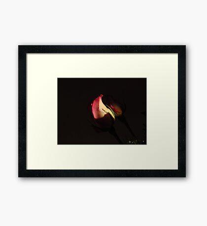 Shaded Love~! Framed Print