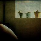 A moment of quiet langour by Anne  McGinn