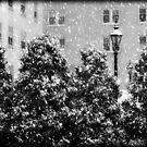 Milwaukee Winter © by Dawn Becker
