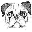 Pug Love by Robina Wilson