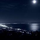 Rosebud by Night by Dave Callaway