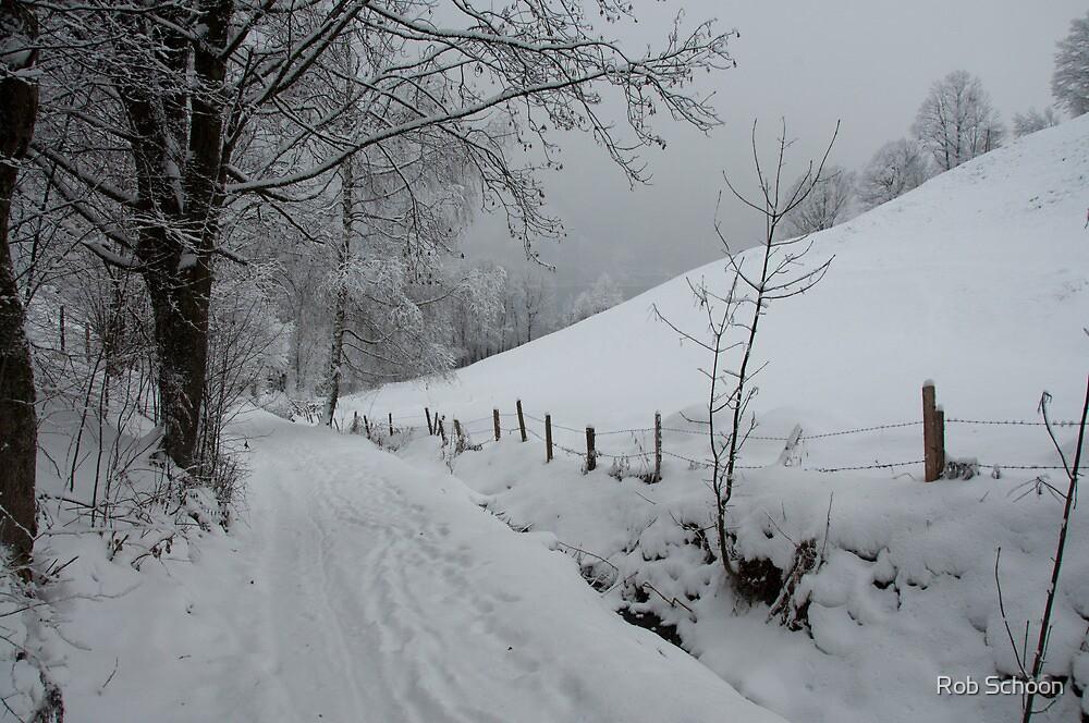 Snowy path near Thumersbach by Rob Schoon