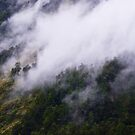 Misty Mountain Hop by Caroline Gorka