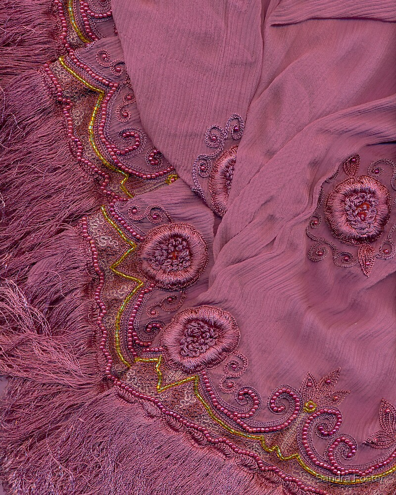Beaded Sari by Sandra Foster