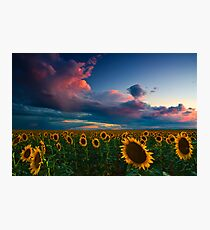Skies Of A Summer Sunset Photographic Print