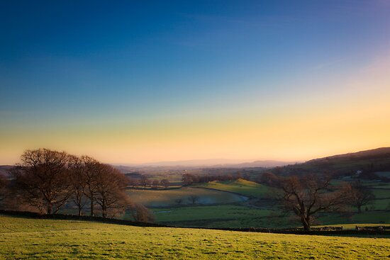 Lyth Valley Winter by Rob Sutherland