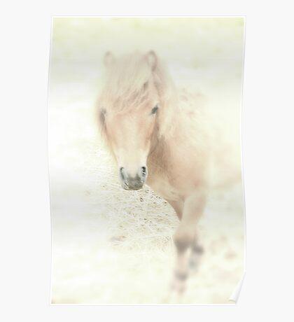 A Horses Spirit Poster