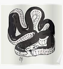 Chloe's Snake Shirt - Episode 5 Poster