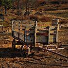 The Art of Cart by vigor
