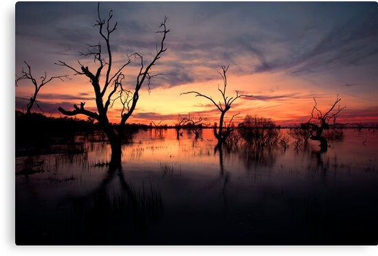 Lake Menindee Sunset  by Malcolm Katon