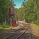 Puffing Billy Water Tank and Points at Emerald Lakeside by TonyCrehan