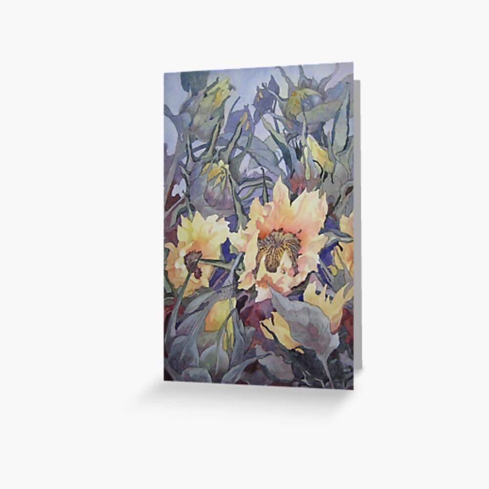 Sunflower Buds  Greeting Card