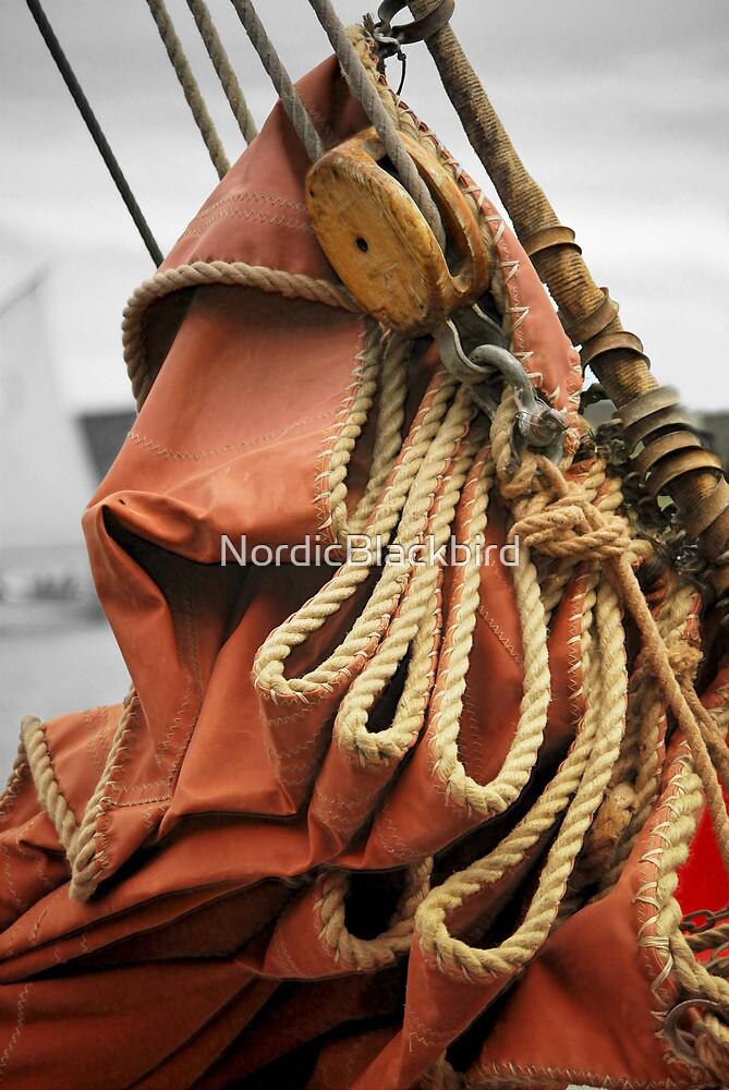 Swan's Sail by NordicBlackbird