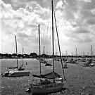 Floating Yatch Club  (Black and White) by Shawnuffdigital