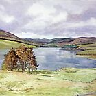 The Backwater Dam, Glen Isla, Angus by Joyce Grubb