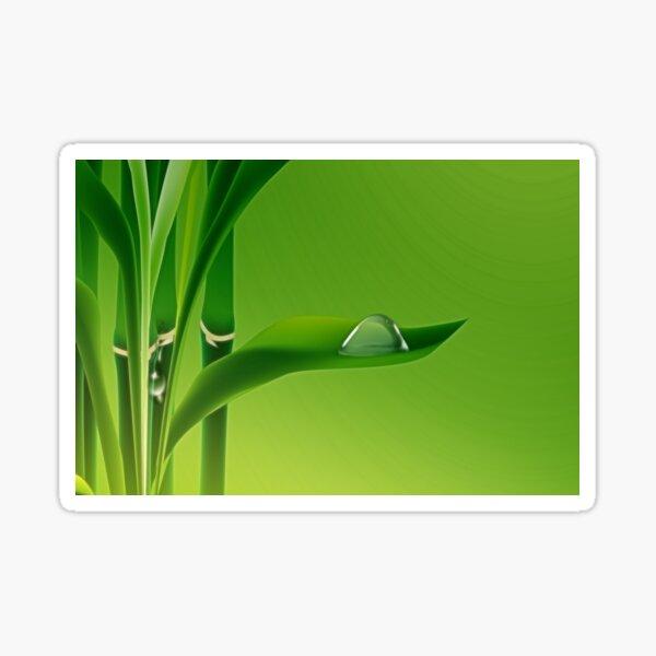 Bambus mit Wassertropfen auf dem Blatt Sticker