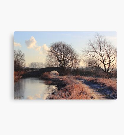 Touch of frost Canvas Print