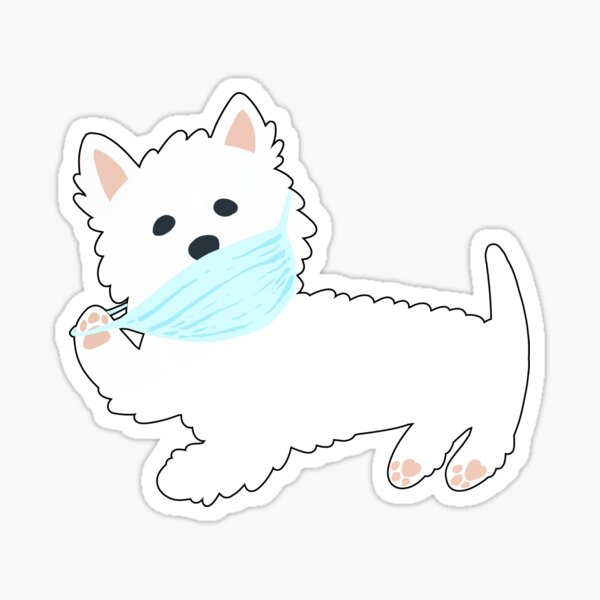 Self isolating Westie pup  Sticker