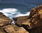 """Don't look down!"" ∞ Bermagui, NSW - Australia by Jason Asher"