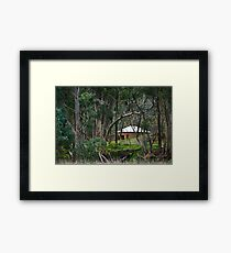 The Pines Reserve Framed Print