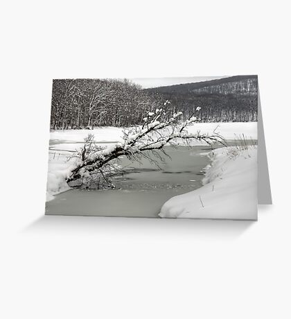 Silver Mine Lake In Winter Greeting Card