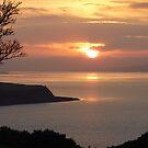 Winter Sunset On Inch Island by Fara