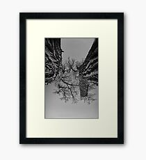 Fighting Brothers Framed Print