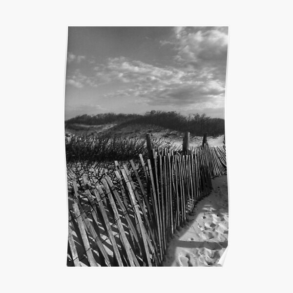 Dune Fence at Sandy Hook Poster