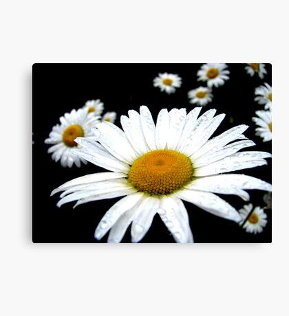 Beautiful Wild Flower Canvas Print
