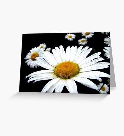 Beautiful Wild Flower Greeting Card