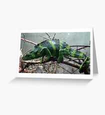 Chameleon and not of the Kharma persuasion Greeting Card