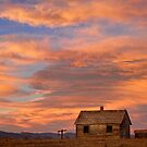 Little House On The Colorado Prairie by Bo Insogna