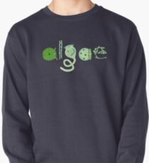 Literate Microscopic Algae Pullover