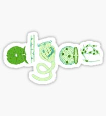 Literate Microscopic Algae Sticker
