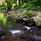 Goomburra National Park by Robert Ashdown