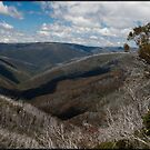 View from Mount Hotham by Andrew Wilson