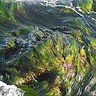 Waves of Green by Jordan Selha
