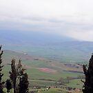 Tuscan Hills by keki