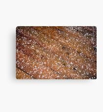 Ice Pellets Canvas Print