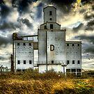 Grain Silo D by Lea Valley Photographic