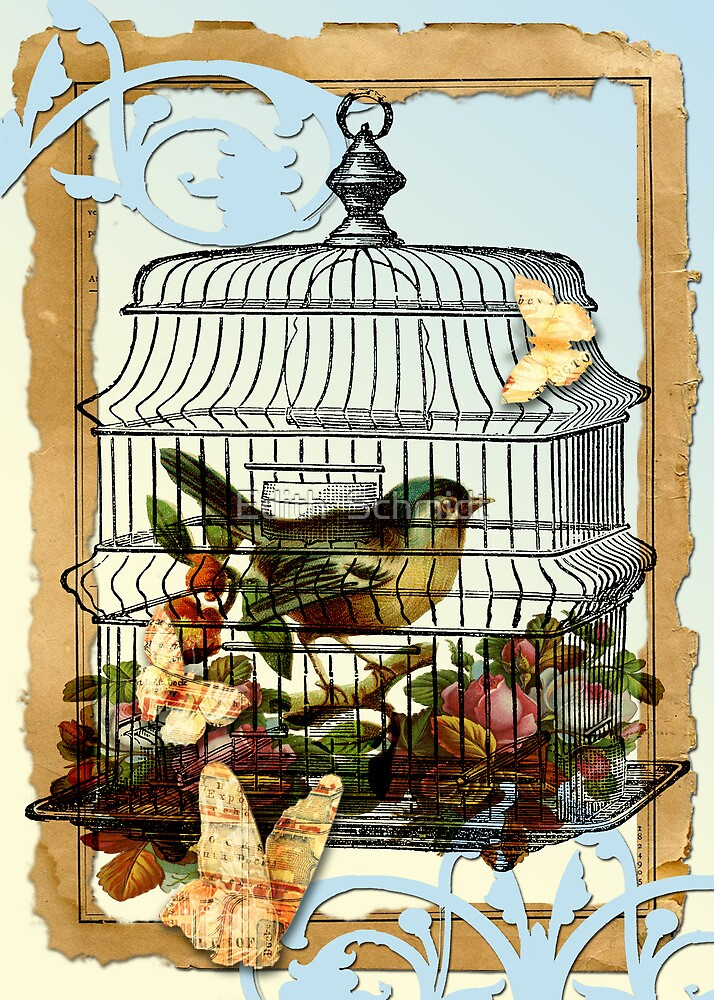A Caged Bird Sings  by Edith  Schmidt