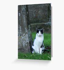 graveyard cat Greeting Card