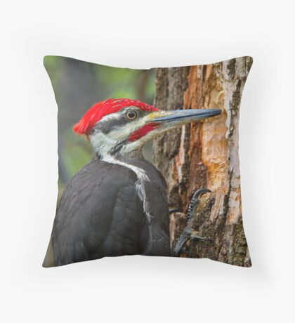 I know you're in there! Throw Pillow