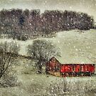 Circa 1855 by Lois  Bryan