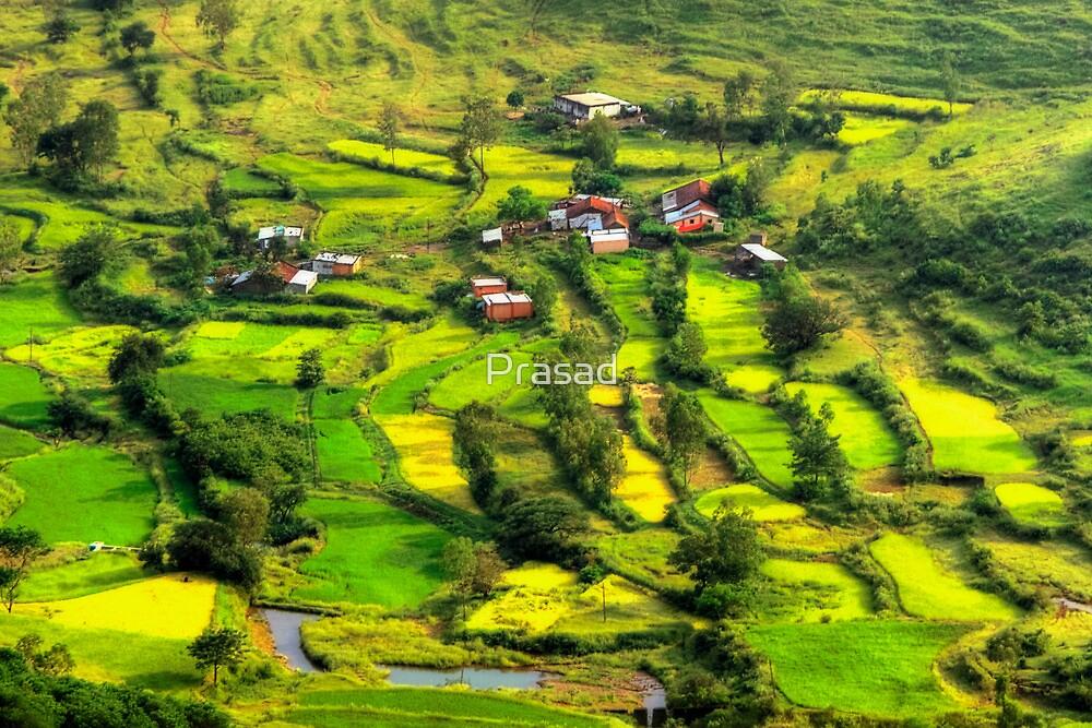 Nature's Palette by Prasad