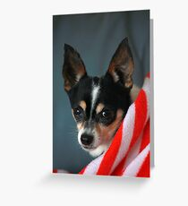 Eddie~ Greeting Card